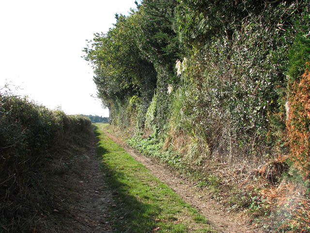 Bridleway to The Street in Bergh Aphton