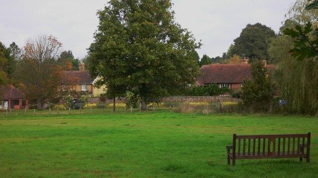 The green at Shamley Green