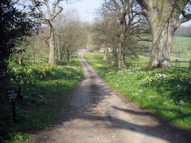 Track to Little Boarzell Farm