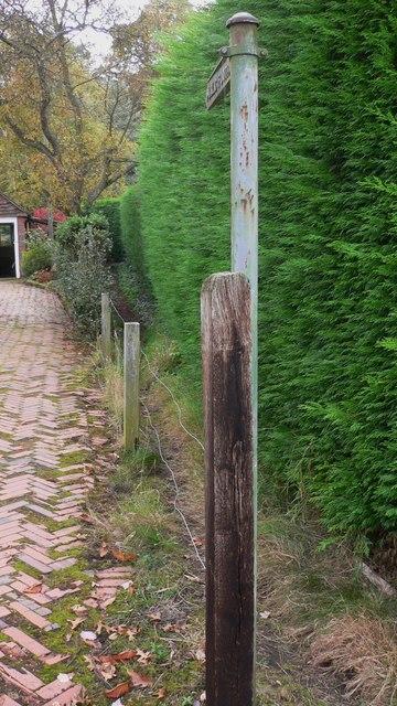 Extremely narrow footpath at Shamley Green