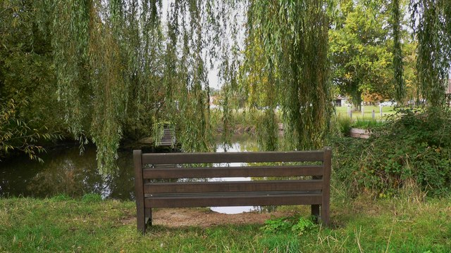 Seat by duck pond at Shamley Green