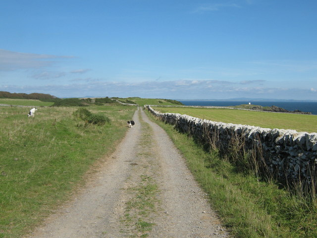 Track near the Isle of Whithorn