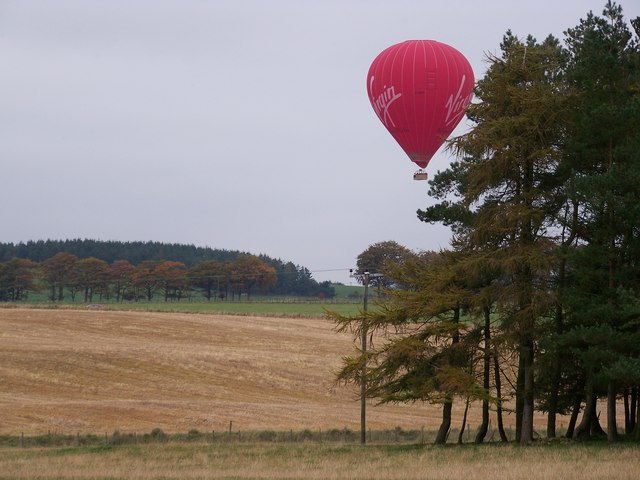Hot Air Balloon Stuck In Tree!