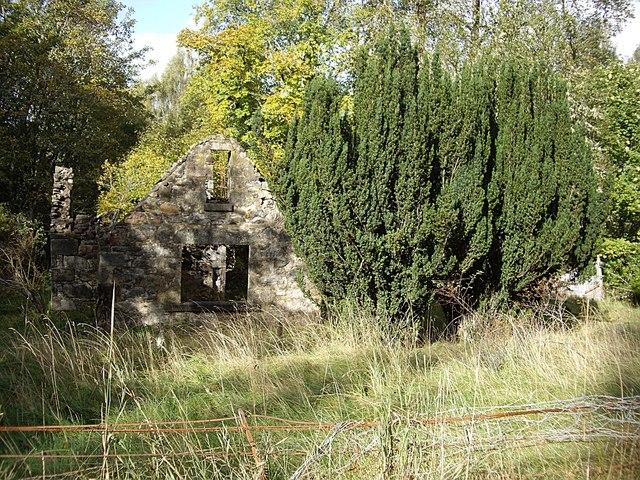 Ruined cottage near Hilton Lodge