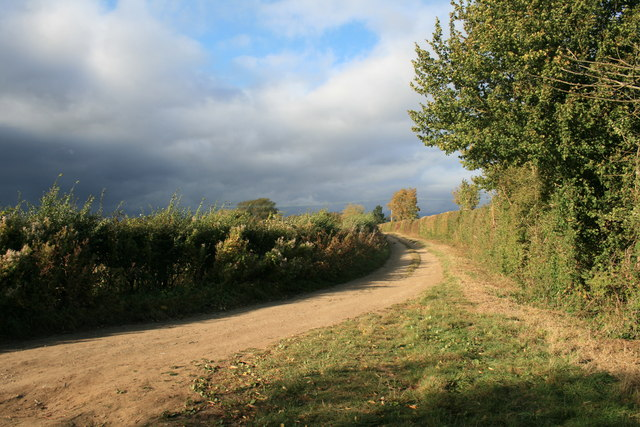 Bend in the bridleway