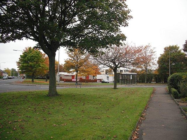 Anderson Lane