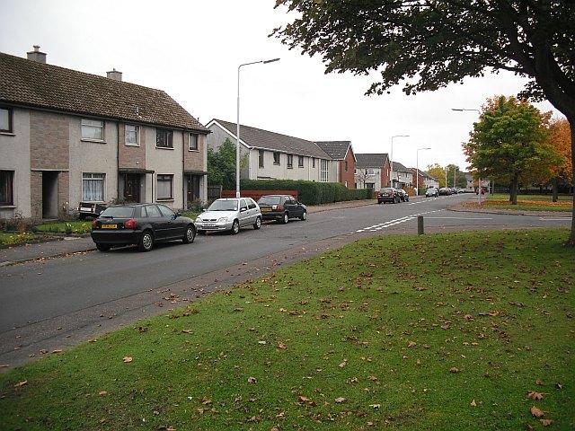 Primrose Avenue