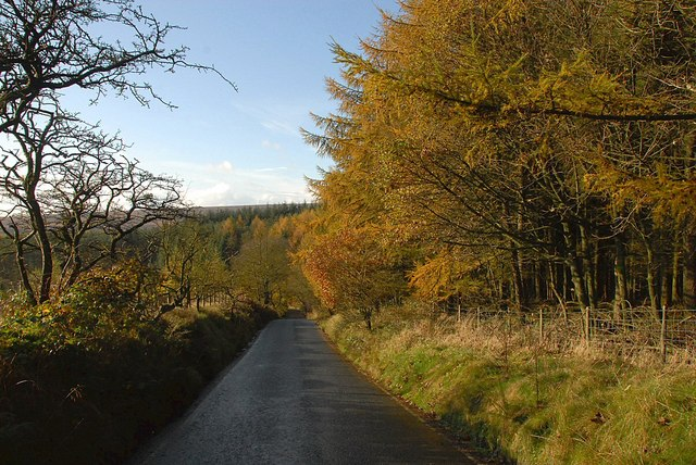 Stones Bank Rd in Autumn