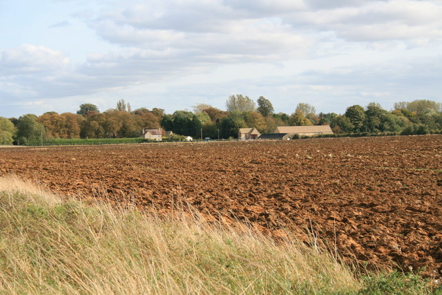 View over the field to Alvescot