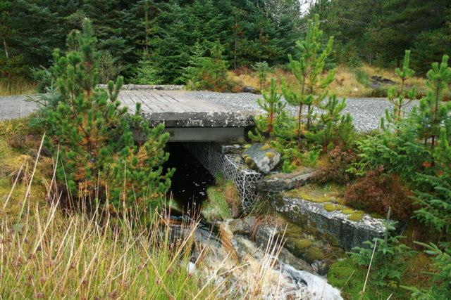 Peaty waters rush under the bridge in Dalchork Wood