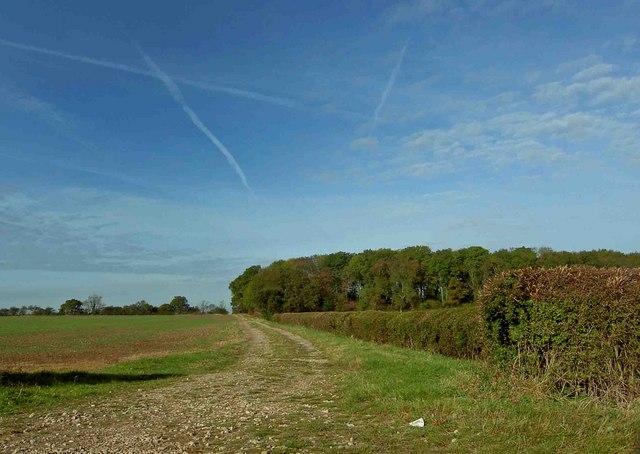 Farm track near Kneesall Lodge