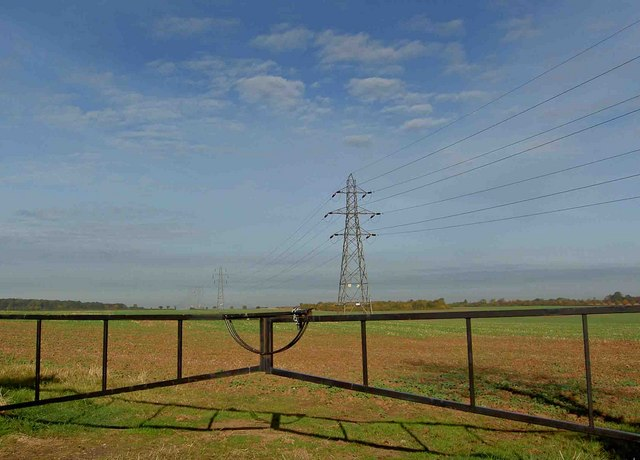 Gate and pylons