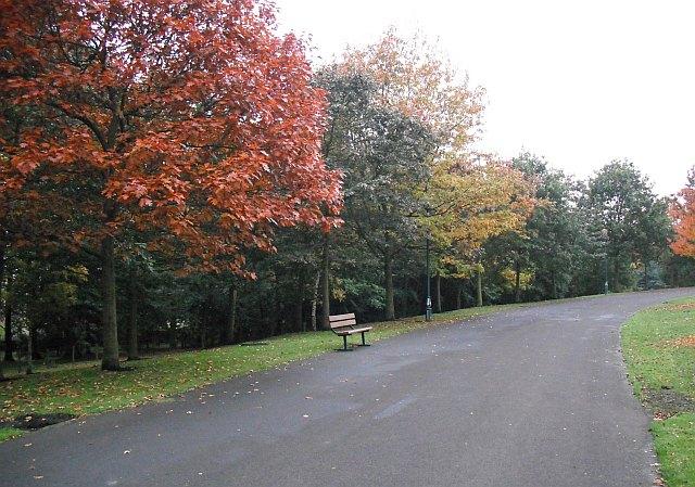Path, Pittencrieff Park