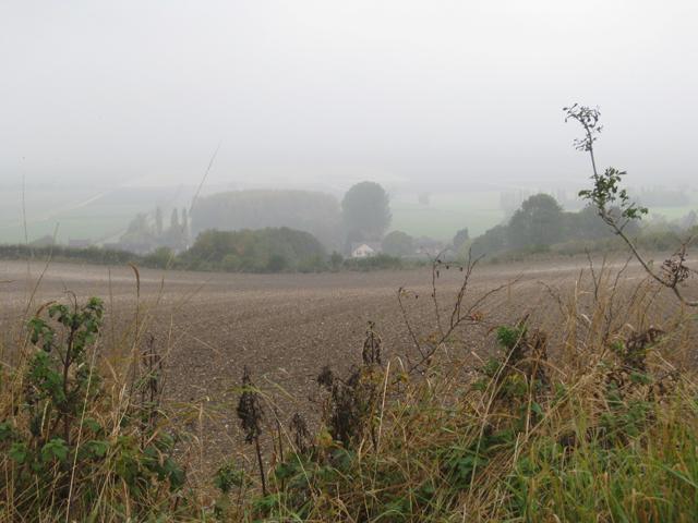 Misty Wolds near Bonby