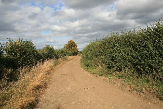 Bridleway to Alvescot