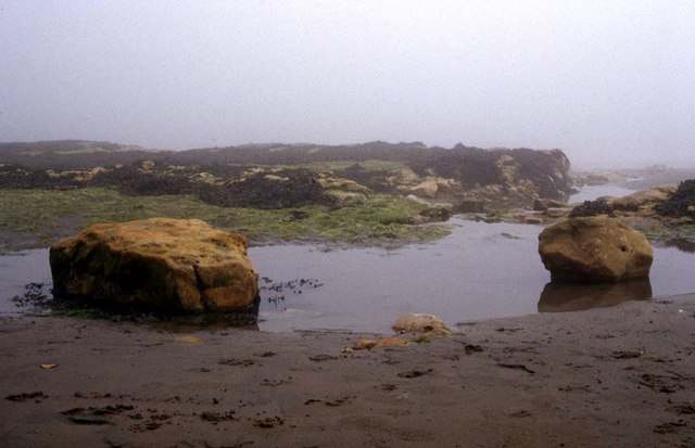 Rocky shoreline at Bembridge