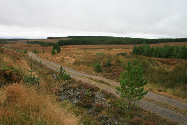 The long and winding road of Dalchork
