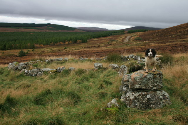 Old sheepfold on the slopes of Meall Odhar