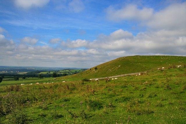 Weaver Hills