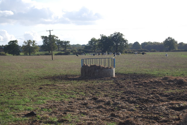 Cattle feeding trough, Leigh Park Farm