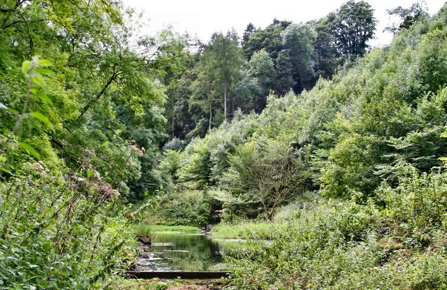 River Bradford, nr Youlgreave