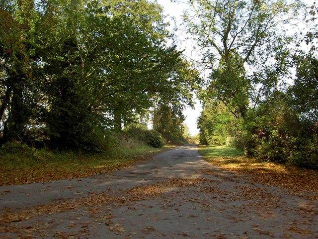 Byway from Winkburn village
