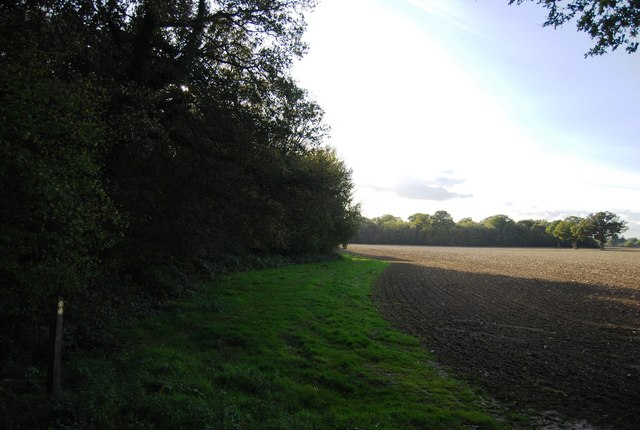 Footpath along the northern edge of Price's Wood