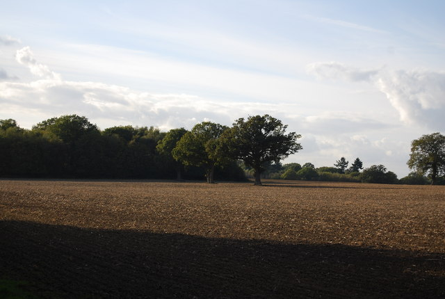Large ploughed field west of Price's Farm