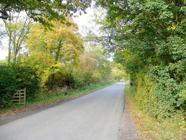 Laverton Lane 2