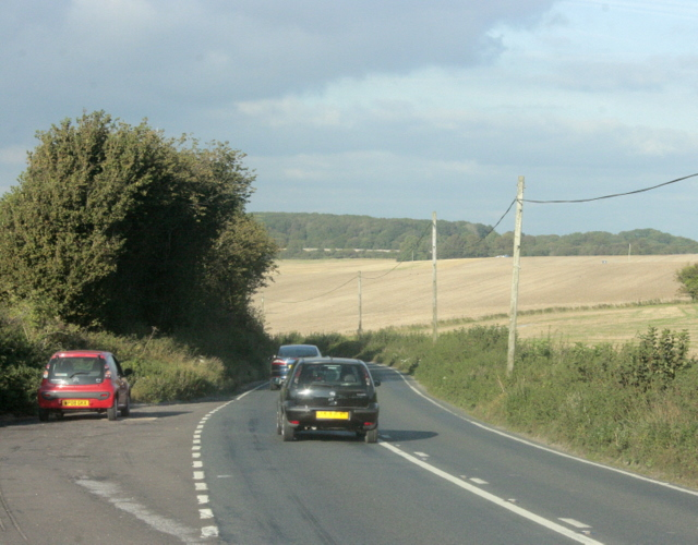 2009 : A350 layby near Lower Pertwood
