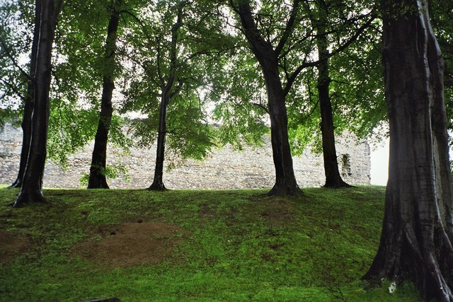 Dufftown, black trees with the wall of Balvenie Castle