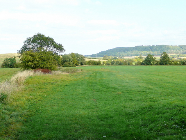 Bridleway across green pasture