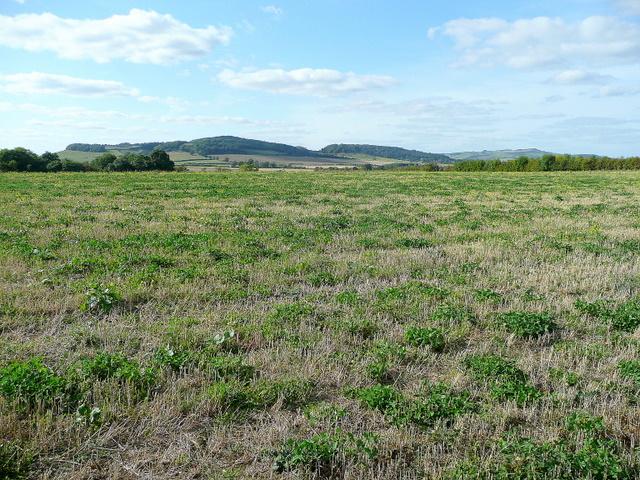 View to Alderton, Dumbleton and Bredon Hills