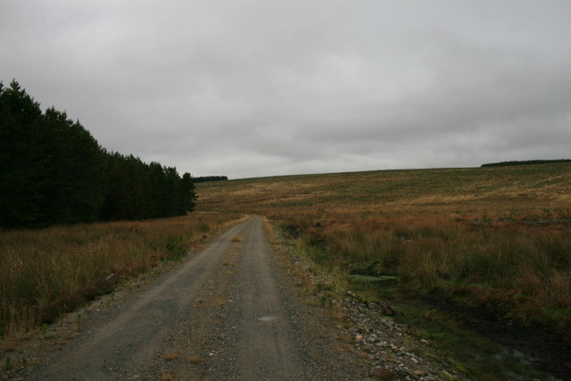 Northerly view towards the slopes of Cnoc a Ghiubhais