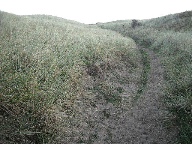 Fife Coast Path, Dumbarnie Links