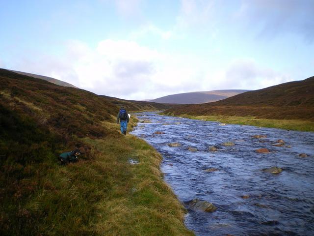 Heading upstream on the Tarf