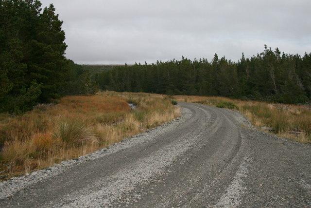 A backward glance along the track