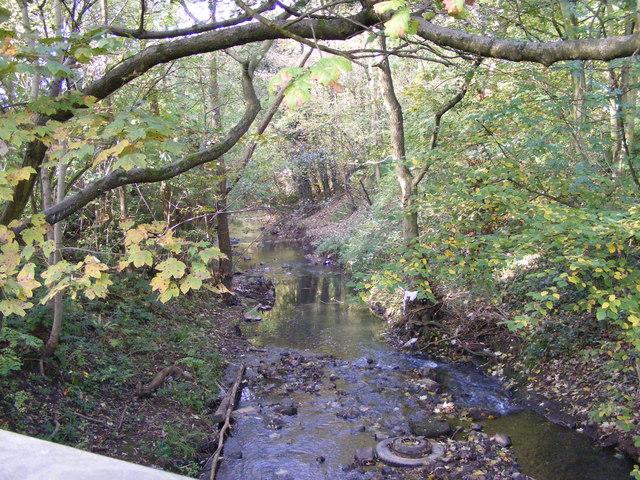River Stour View