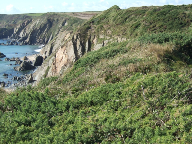 Cliffs above Marloes Sands