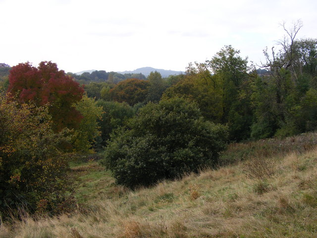 Reserve View
