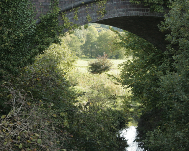 2009 : Midford Brook passing through a railway viaduct