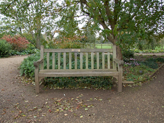 Will and Lyra's bench