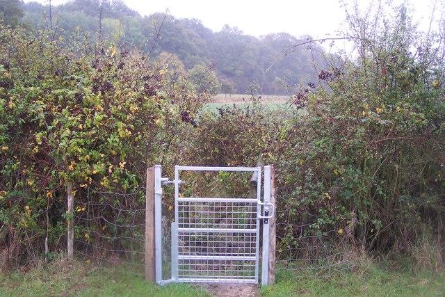 Gate near Hatchlands Farm