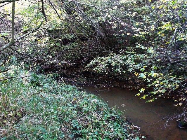 Luggie Water near Wester Glentore