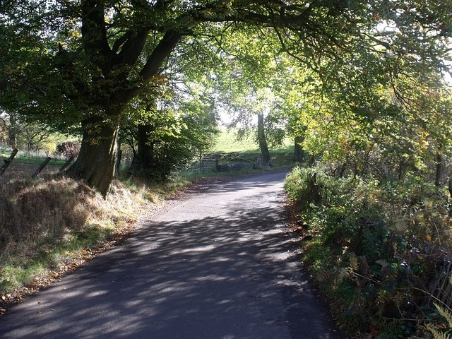 Wester Glentore, sheltered country lane