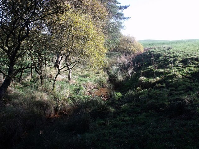 Rumblybugs, tributary from Fannyside Muir