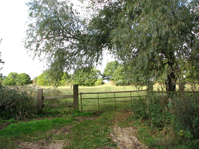 Gate into a cattle pasture
