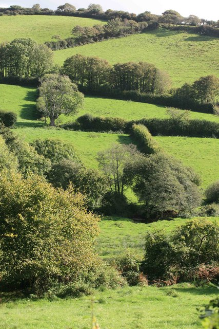 West Looe river valley