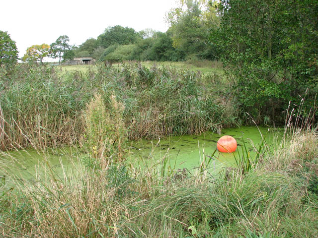 Red buoy in drain north of Bell Hill