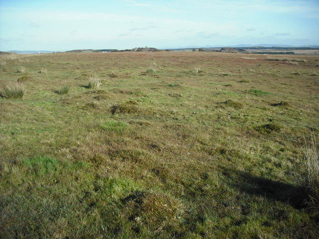 Mossland near Fortisset Road
